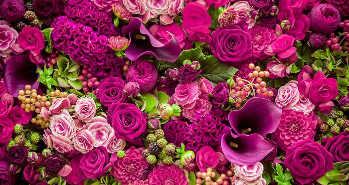 Bloemen voor alle hulpen op de dag van de huishoudelijke hulp